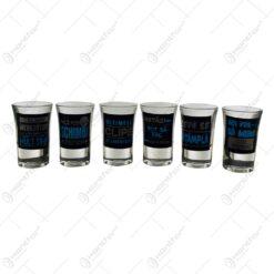 Set 6 pahare tip shot realizate din sticla - Design cu diverse mesaje pentru petrecerea burlacilor (Model 1)
