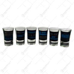 Set 6 pahare tip shot realizate din sticla - Design cu diverse mesaje pentru petrecerea burlacilor (Model 2)