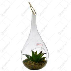 Terariu realizat din sticla cu agatatoare