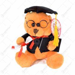Ursulet de plus - Design pentru absolventi (Model 2)