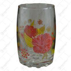 Pahare din sticla. curbate. inscriptionate. cu grafica