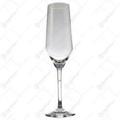 Set 6 pahare realizate din sticla pentru sampanie (Model 1)