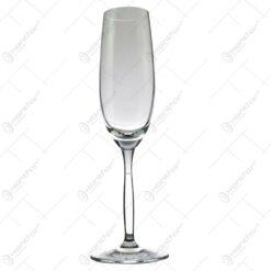 Set 6 pahare realizate din sticla pentru sampanie (Model 3)