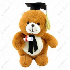 Ursulet realizat din plus - Cadou de absolvire