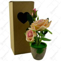 in cutie de cadou - Trandafiri - Diverse culori (Model 2)