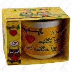 Cana realizata din ceramica in cutie cadou - Design cu mesaj - 2 modele