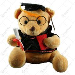 Ursulet realizat din plus - Design pentru absolvire - 2 modele (Model 1)