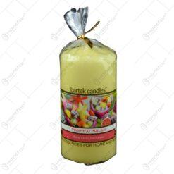 Lumanare parfumata cilindrica - Tropical Salad