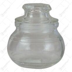 Recipient din sticla pentru condimente 8 CM