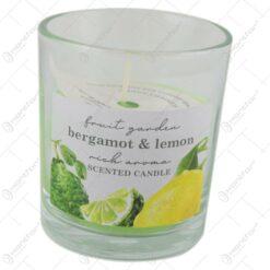 Lumanare parfumata in pahar Fruit Garden 90gr