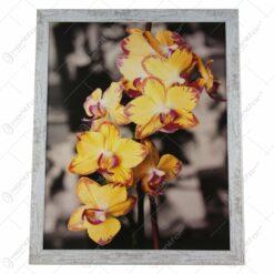 peisaj/floral/vintage 54x44 CM