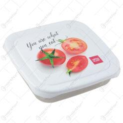 Cutie alimente din plastic 0.5 L 16x16 CM