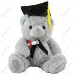 Ursulet din plus pentru absolvire 22 CM